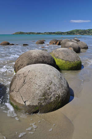 oamaru: Moeraki Boulders are perfectly sperical rocks on the beach at Moeraki, near Oamaru. Up to 13 feet round Maori believe they were canoe food baskets.