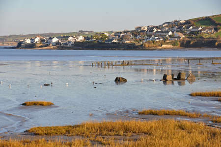 burrows: Appledore seen across the estuary at Northam Burrows, in North Devon, England. Northam burrows is a coastal reserve between Northam and Westward Ho and is the home for many wading birds. A popular place for bird watchers and walkers alike