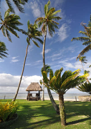 south pacific ocean: The tranquil beaches of the  South Pacific Ocean really are paradise found. This thatched beach hut overlooks the Coral Coast on the island of Viti Levu (Fiji)