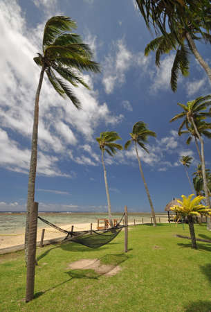 south pacific ocean: The tranquil beaches of the  South Pacific Ocean really are paradise found. This hammock offers the perfect resting place overlooking the Coral Coast on the island of Viti Levu (Fiji) Stock Photo
