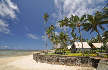 south pacific ocean: The tranquil beaches of the  South Pacific Ocean really are paradise found. This garden overlooks the Coral Coast on the island of Viti Levu (Fiji)