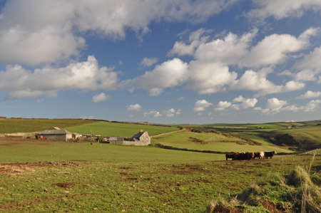 baggy: Croydehoe Farm on the clifftop at Baggy Point, Croyde, North Devon, England. The image is taken from the public footpath from Croyde village to Baggy Point, the view is familiar to all who walk this popular part of the Southwest Coast Path. Stock Photo