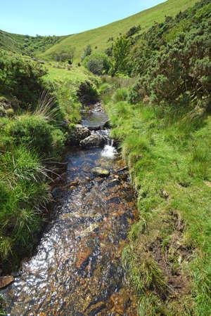 river: Stream running off Homerton Hill into Meldon Reservoir, Dartmoor, Devon, England, taken from footpath bridge. Stock Photo