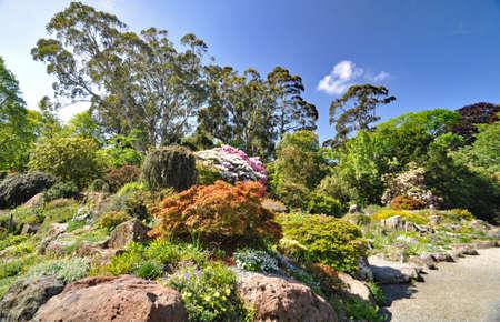 The Rock Garden, Christchurch Botanical Gardens
