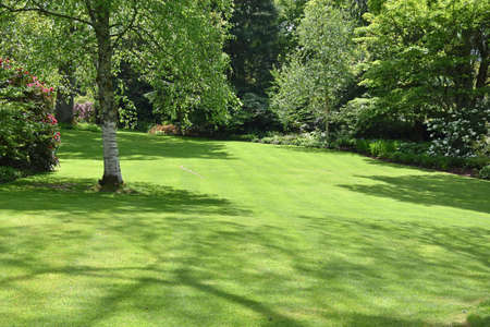 A perfect English country garden with manicured lawn and floral boarders surrounded by shrubs, small trees, bushes, and some colourful flowers.