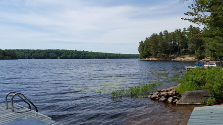 Picture Taken From Dock at Summer Cottage on the Lake in North America