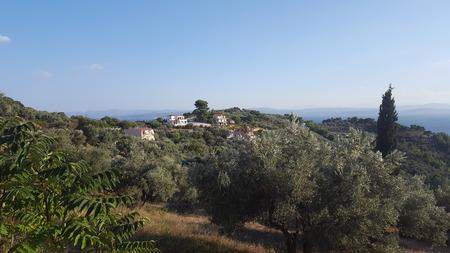 Old/Classical Villas/Houses in European/Mediterranean/Greek Landscape Stockfoto