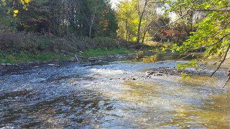 Autumn River Flowing in North America/Canada Stockfoto