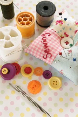 Needles and threads with a pin cushion