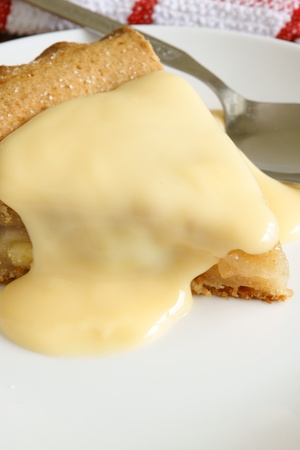 Apple pie and custard Stock Photo - 22083556