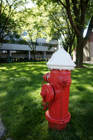 American style fire hydrant on a grassy lawn in front of buildings  photo