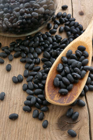 turtle bean: Black Turtle Beans a popular bean in Latin and Oriental cooking