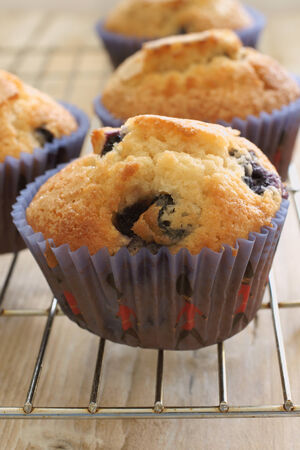 Freshly baked blueberry muffins photo