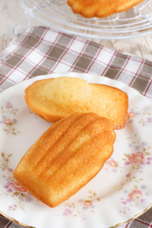 the madeleine: Madeleines or petite madeleine a traditional cake from the Lorraine region of France