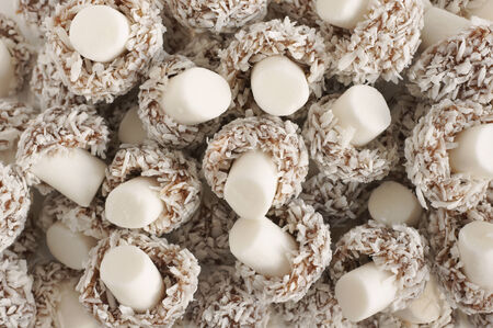 Coconut mushrooms coconut and chocolate candies photo