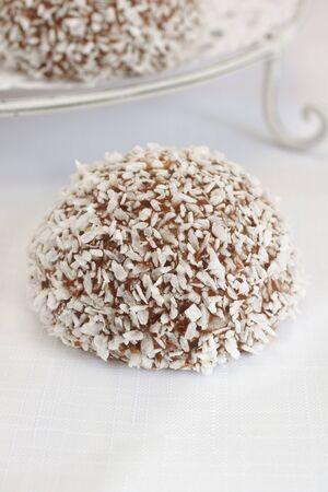 neve palle: Palle di neve cocco marshmallow ricoperti di cioccolato e cocco Archivio Fotografico