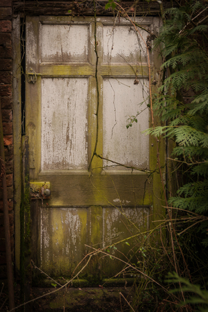 nightmarish: Spooky doorway to a haunted house or nightmare overgrown and forgotten