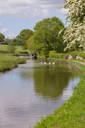 View along Shropshire Union canal on a summer afternoon in England