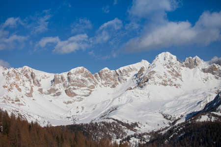 snowcapped: panorama of the Alpes at the Falcade in Italy