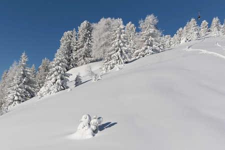 fassa: panorama of the Alpes at the Passo San Pellegrino - Val di Fassa in Italy