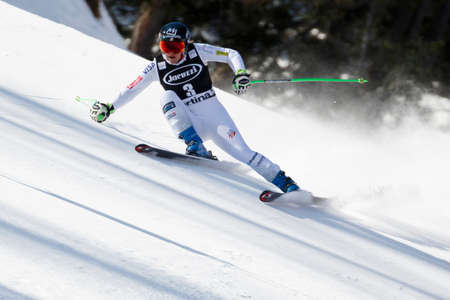 fis: Cortina dAmpezzo, Italy 24 January 2016. COOK Stacey (USA) competing in the Audi FIS Alpine Skiing World Cup Womens Super G on the Olympia Course in the Dolomite mountain range.