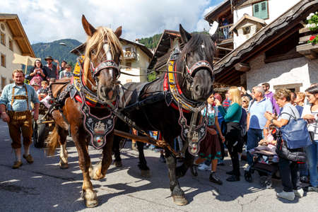 Falcade, Belluno, Italy - September 24, 2016: Se Desmonteghea a great party in Falcade for the livestock returning from the highland pastures