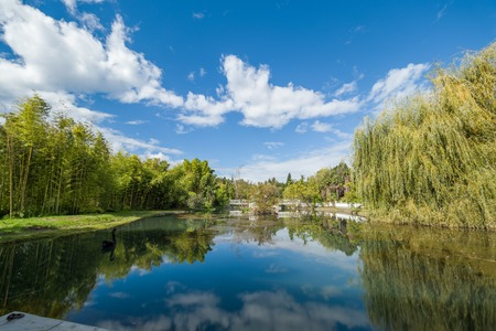 A pond with trees on the shores. Reflection of blue sky with clouds in calm water. Stockfoto