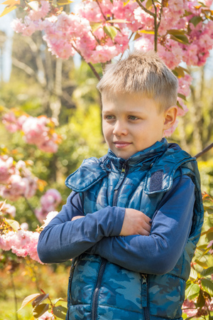 An eight-year-old boy stands among the magnificently blooming Sakura in the rays of sunset.