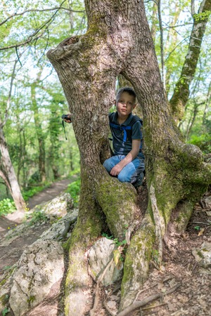 A boy 8 years old with backpack sits in the hollow of a large old tree Stok Fotoğraf