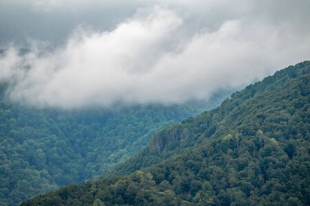 High mountains with forested slopes and peaks hidden in the clouds. Heavy fog in the mountains on a cloudy day.