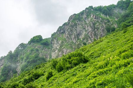 Mountains with rocky peaks behind the green meadow. Environmental Protection. Travel background. Caucasus, Russia