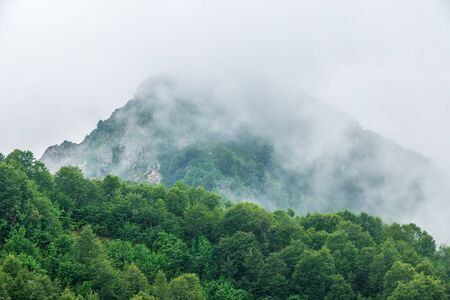 High rocky mountain peak in the clouds. Mountain peak with green vegetation on the slopes.