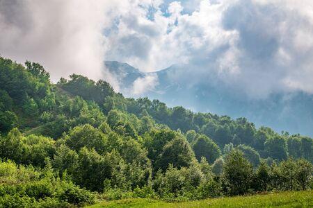 Hohe Berge mit bewaldeten Hängen und in den Wolken versteckten Gipfeln. Starker Nebel in den Bergen an einem bewölkten Tag.