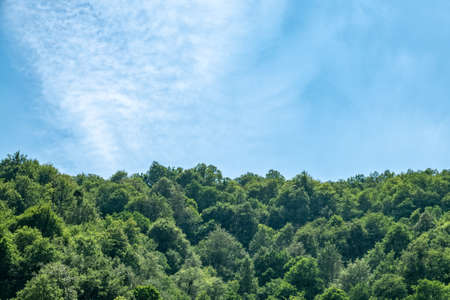 Dense textured clouds over the green forest on the hillside. Cloudy day in the green mountains. Mountain landscape with thick clouds.