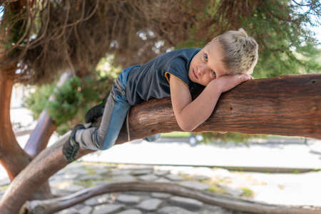 A little boy climbed a tree and rests. The boy lies on a thick branch of old tree like a cat 스톡 콘텐츠