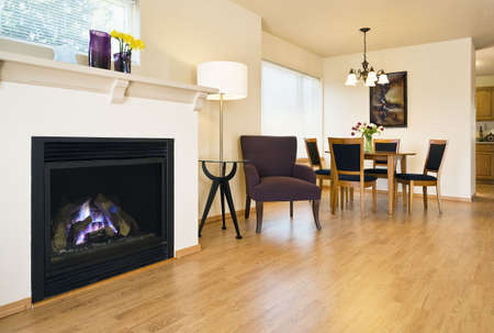 Spacious living area with hardwood floors. A fireplace and dining table are in view. Horizontal shot.