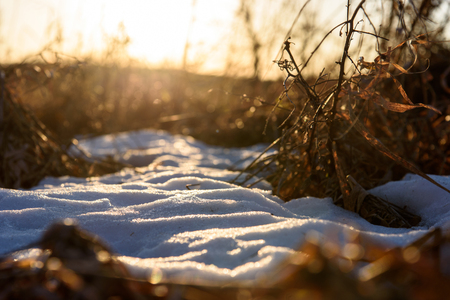 worms eye view of patch of snow in field at sunset