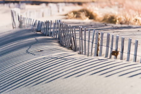 curved wooden beach dune protection fence with afternoon sun and long shadows
