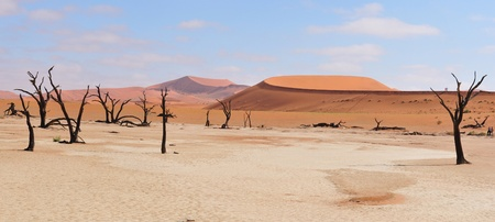 Panorama from three photos of the Namib near Sossusvlei,  Namibia