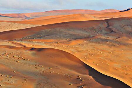 Patterns in the sand of the Namib desert at Sossusvlei, Namibia