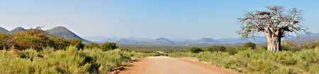 paisagem: Kaokoveld panorama from the road to Epupa. Compiled from three separate photos