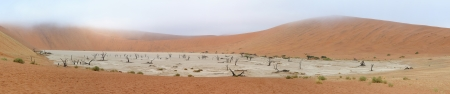 Panorama from ten photos of Deadvlei near Sossusvlei,  Namibia photo