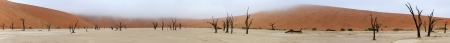 Panorama from ten photos of Deadvlei near Sossusvlei,  Namibia