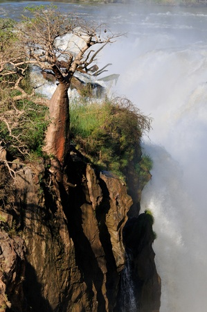 A small portion of the Epupa waterfalls in Namibia at sunrise photo