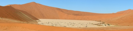 Panorama from six photos at Deadvlei near Sossusvlei,  Namibia photo