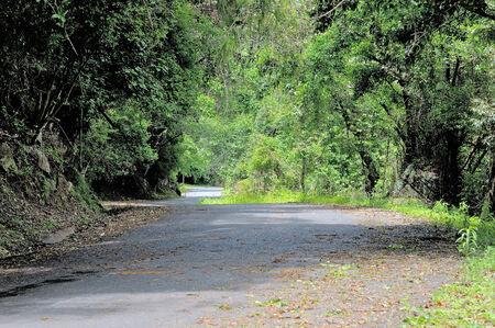 Road in the Oribi Gorge Nature Reserve, Kwazulu-Natal, South Africa
