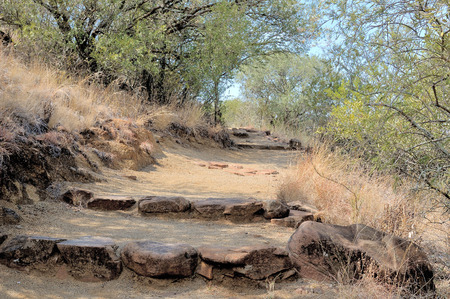 botanical gardens: Footpath in the Free State Botanical Gardens in Bloemfontein, South Africa