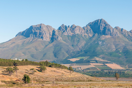 The Helderberg (clear mountain) with vineyards on its slopes near Somerset West in the Western Cape Province of South Africa
