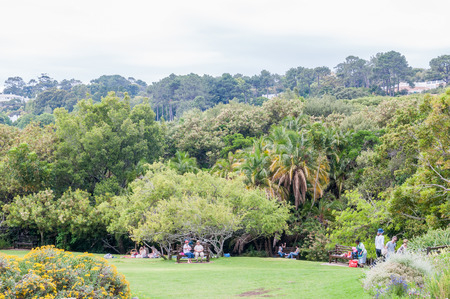 newlands: CAPE TOWN, SOUTH AFRICA - DECEMBER 9, 2914: Unidentified people enjoying the serenity in the Kirstenbosch National Botanical Gardens