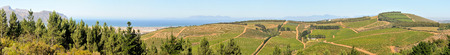 sir: SIR LOWRYS PASS, SOUTH AFRICA - DECEMBER 4, 2014: Panoramic view of a wine farm near Sir Lowrys Pass. Gordons Bay is in the back